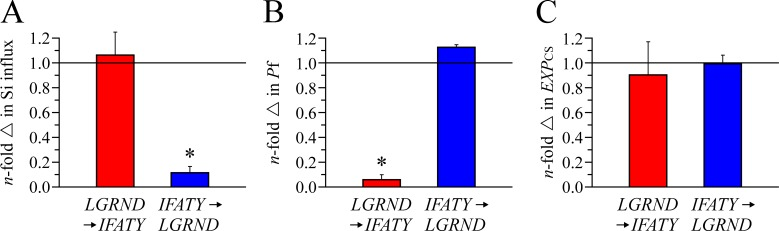 Transport characteristics and membrane expression of AQP1 LGRND→IFATY and AQP10 IFATY→LGRND . Experimental conditions were as described in Fig. 4 . Data expression is also as described in Fig. 4 . (A) Si influx. Data are expressed as means ± SE of 10 oocytes among three experiments. (B) Water permeability. Data are expressed as means ± SE of three to five oocytes among three to four experiments. (A and B) The asterisk is used to indicate that the mean is significantly different statistically (*, P