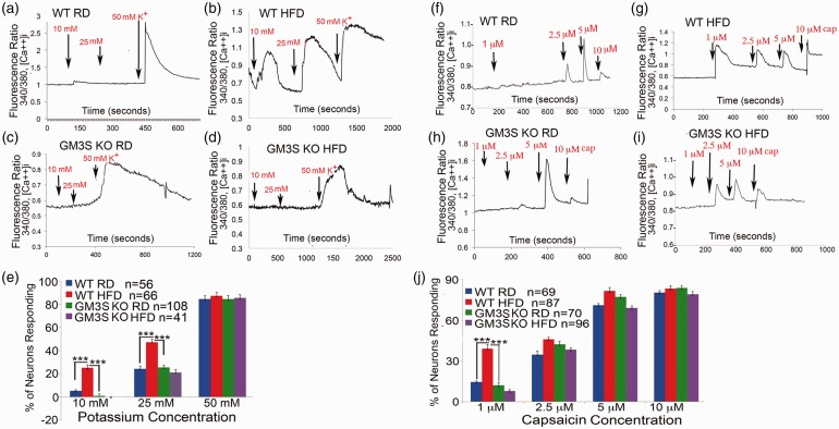 GM3S depletion prevents increased intracellular calcium influx in DRG neurons in diet-induced diabetes. (a–d) Representative tracings of intracellular calcium responses ([Ca++] i ) to different concentration of potassium (K + ) (10–50 mM) of acutely cultured DRG sensory neurons from control WT RD (a, n = 56), WT HFD (b, n = 66), GM3S KO RD (c, n = 108), and GM3S KO HFD (d, n = 41) mice. (e) Percentage of DRG neurons from each group responding to different concentration of potassium (K + ) (10, 25, and 50 mM). Values are expressed as mean ± SE. *** p