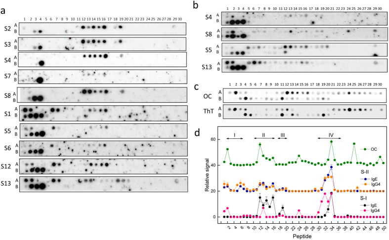Reactivity of Gad m 1 chain. ( a ) Regions binding IgE in sera from fish-allergic patients. ( b ) Regions binding IgG4 in sera from fish-allergic patients. ( c ) Sequences with anti-amyloid OC antibody reactivity and ThT binding properties. ( d ) Relative signal of the binding of IgE and IgG4 from the sera of fish-allergic patients and the anti-amyloid OC antibody to the distinct overlapping peptides representing the Gad m 1 sequence. Signals corresponding to the IgE and IgG4 binding are displayed as the average and standard deviations of the signals of sera groups S-I (S2, S3, S4, S7, and S8) and S-II (S1, S5, S6, S12, and S13) are shown. Peptides are indicated by numbers on the top (row A: peptides 1–30, row B: peptides 31–50) and their sequences are displayed in Supplementary Fig. S1 . The sera are depicted as Si, where i is a number ( Supplementary Table S1 ).
