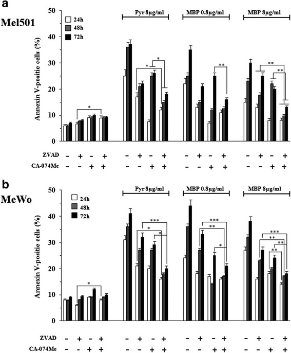 Pan-caspase inhibitor Z-VAD-FMK and the <t>cathepsin</t> B inhibitor <t>CA-074-Me</t> inhibit Methylbenzoprim-induced apoptosis in melanoma cells. The percentage of apoptotic cells was evaluated after 24, 48 and 72 h of MBP (0.8, 8 μg/ml), the positive control Pyr (8 μg/ml) and untreated cells in Mel501 (panel a ) and MeWo (panel b ) cell lines pretreated for 2 h with the pan-caspase inhibitor Z-VAD-FMK (50 μmol/L) or the cathepsin B inhibitor CA-074-Me (10 μmol/L) or both. Columns , mean values of three independent experiments; bars, SD. *, P