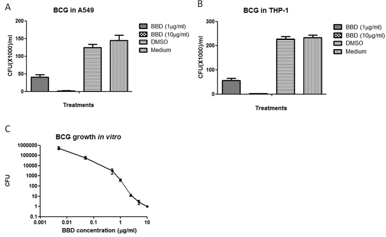 Effect of BBD on M. bovis BCG growth in cells and outside cells in bacterial culture medium. BBD can inhibit M.bovis BCG growth in A549 ( A ) or THP-1 cells ( B ) and outside host cells in bacterial culture medium 7H9 ( C ) and the inhibitory effects are in dose-dependent manner.