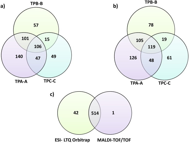 Venn Diagrams depicting the total number of unique T . pallidum proteins identified per rabbit biological replicate (N = 3) analyzed by (A) Matrix-assisted laser desorption/ionization time of flight and (B) Electrospray Ionization <t>LTQ-</t> <t>Orbitrap</t> <t>Velos</t> MS/MS. All spectra were screened against the UniProt databases (ID: UP000000811 UP000014259), with a peptide and protein identification confidence interval of 95%. There was considerable overlap between the complementary MS analytical methods whereby an additional 42 treponemal proteins were found in the Orbitrap analysis as depicted in diagram (C).