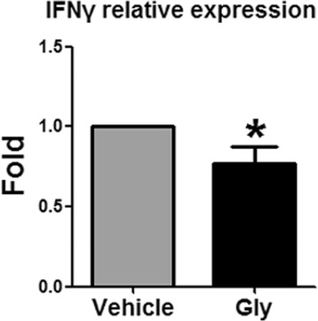 Gly inhibits IFNγ gene expression in CD4 T cells. Leukocytes were isolated from the ischemic brain 3 days after stroke, and CD4 T cells were purified by using FACS sorter. Gene expression of IFNγ, IL-4, and IL-10 were measured by RT-qPCR. However, IL-4 and IL-10 gene expressions were not detectable. Gene expression of IFNγ was significantly inhibited by Gly administration. N = 3, * P