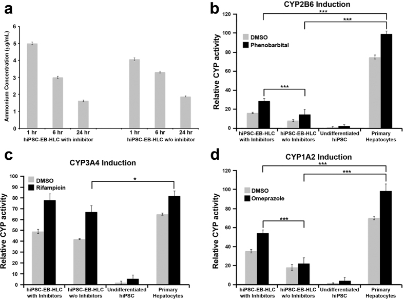 ( a ) Ammonium metabolism assay over a 24-hour period for both conditions with and without inhibitors; Cytochrome P450 (CYP450) induction analysis comparing the two experimental conditions with and without inhibitors. Several CYP enzymes were evaluated through incubation of the cells with different inducers: ( b ) Phenobarbital for the CYP2B6, ( c ) Rifampicin for the CYP3A4 and ( d ) Omeprazole for the CYP1A2 for a period of 72 hours. DMSO was used as control to test the basal activity of different CYP450. Data presented as mean ± SD (n = 3). *p