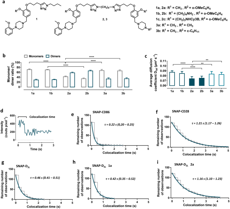 Influence of monovalent (1a,b), bivalent (2a,b) and bivalent control (3a,b) dopamine D 2 receptor antagonists on receptor dimerization. ( a ) Chemical structures of monovalent ligands ( 1a–c ), bivalent ligands ( 2a–c ), and control ligands ( 3a,b ). ( b ) Monomer/dimer ratios calculated from fitted fluorescence intensity distributions of Alexa546-labeled SNAP-D 2L receptors incubated with monovalent ( 1a,b ), bivalent ( 2a,b ), control ( 3a,b ) ligands using a mixed Gaussian model ( Supplementary Table S2 , Supplementary Fig. S6a ). Data represent mean ± s.d. of n analysed cells ( n = 16 for 1a , 8 for 1b , 8 for 2a , 16 for 2b , 6 for 3a and 8 for 3b . ( c ) Average diffusion coefficients (D lat ) of the corresponding ligand-SNAP-D 2L receptor complexes of the same analyzed cells in ( b ). Data in ( b,c ) represent mean ± s.d., Statistical analysis was performed by an unpaired t -test (** p -value