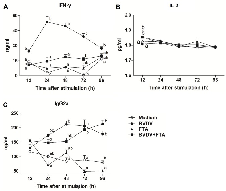 Concentrations of IFN-γ, IL-2, and IgG2a in cell culture supernatants. Bovine PBMCs cultured with medium alone, FTA, BVDV, and BVDV plus FTA. Concentrations of IFN-γ (A), IL-2 (B) and IgG2a (C) were detected by ELISA. Data are presented as means ± SEM of three independent experiments. Mean values at the same time point without a common superscript ( a, b, c ) differ significantly (P