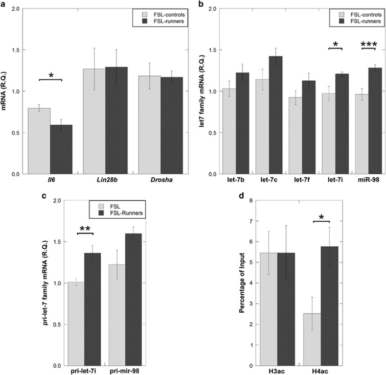 Gene and miRNA expression levels were measured in the prefrontal cortex of FSL with/without access to running wheel (FSL-runners versus FSL-controls) using RT-PCR. ( a ) Physical activity normalized Il6 levels in the FSL-runner group but had no effect on Lin28b and Drosha mRNA levels. ( b ) In line with an Il6 reduction in the FSL rats that were running, let-7i and miR-98 showed significantly increased expression. Specifically, upregulation of let-7i was associated with primary let-7i overexpression ( c ). ( d ) Chromatin immunoprecipitation (ChIP) showed an increased histone H4 acetylation (H4ac) but not histone H3 acetylation (H3ac) within the pri-let-7i promoter of the FSL-runners. Gene expression data were presented as relative quantifications (R.Q.), two reference genes ( Gapdh and Ppia ) were used for normalization of Il6 , Lin28b , Drosha and the primary miRNA genes. Rnu5g was used for normalization of mature miRNAs. ChIP data are presented as percentage of genomic input DNA. Data are presented as group means±s.e.m. For all figures: n =5–7 animals per group, * P
