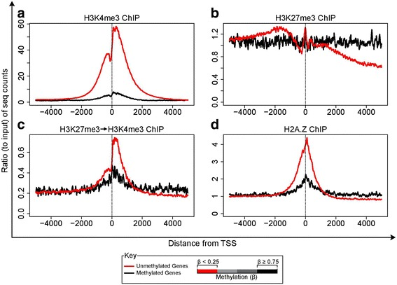 Distribution of ChIP-seq reads around the TSS for gene promoters that are DNA-hypermethylated or unmethylated. Gene promoters were identified as methylated or unmethylated based on the Infinium methylation array data. H3K4me3 a H3K27me3 b sequential-ChIP c and H2A.Z d ChIP-seq reads were binned at 10 bp intervals and the average ChIP-seq reads normalized to corresponding average of the input plotted (Y-axis)