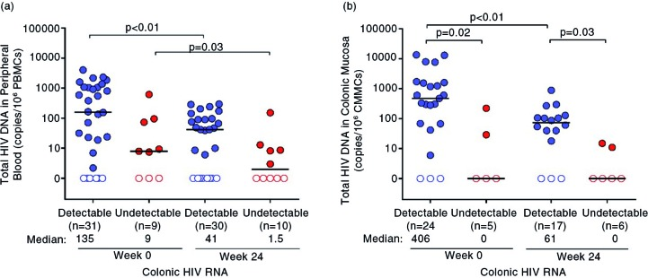 Total HIV DNA in the peripheral blood and colon before and after ART. Total HIV DNA measurements in the (a) peripheral blood and (b) colon are compared before and after 24 weeks of ART. Statistically significant pairwise comparisons ( p