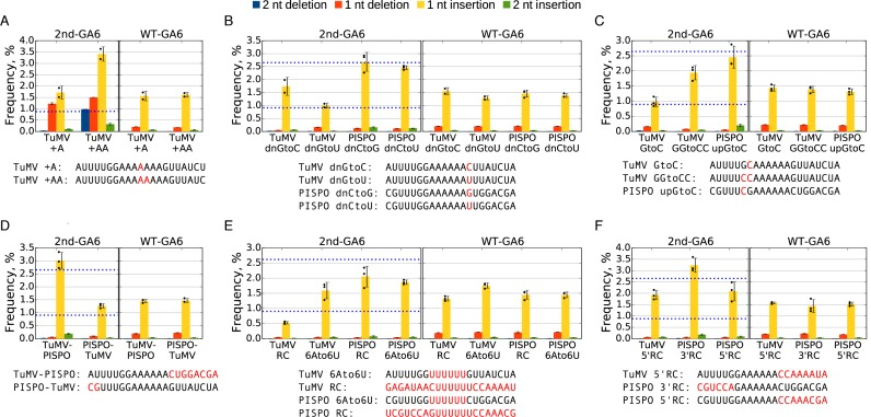 Detection of slippage events at mutated slip site sequences. ( A–F ) Plants were inoculated with various 2nd-GA6 constructs and systemically infected leaves harvested at 11 d p.i. Total RNA was extracted and subjected to targeted high-throughput sequencing. For most mutants three biological samples were used ( n = 3), for TuMV +A, TuMV +AA, TuMV dnGtoC and TuMV dnGtoU only two biological samples were used ( n = 2). The sequences at the 2nd-GA6 site are shown below each graph, with mutated nucleotides indicated in red. The mean frequencies of deletions or insertions at the 2nd-GA6 site of each construct are shown in the left panel and the corresponding WT-GA6 data are shown in the right panel. Error bars indicate standard deviations; black dots mark individual samples for the single-nucleotide insertion data. Reference values for TuMV WT and PISPO WT 2nd-GA6 (0.92 and 2.65%) are indicated with horizontal blue dotted lines.