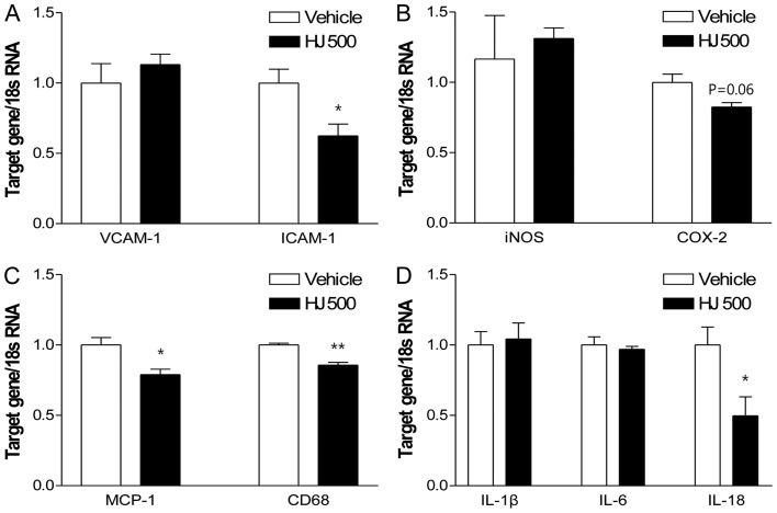 Effect of H. japonicus (HJ) on pro-atherogenic gene expression in the aorta of apolipoprotein E-deficient <t>(apoE</t> −/− ) mice. The apoE −/− mice were fed an atherogenic diet plus either vehicle [0.5% carboxymethyl cellulose (CMC)] as the vehicle group (unfilled bar), and 500 mg/kg of HJ as the HJ500 group (filled bar) for 12 weeks. The whole aortas from 3–4 mice in each group were pooled to extract <t>RNA.</t> The mRNA expression of (A) vascular cell adhesion molecule-1 (VCAM-1) and intercellular adhesion molecule-1 (ICAM-1), (B) inducible nitric oxide synthase (iNOS) and cyclooxygenase 2 (COX-2), (C) monocyte chemoattractant protein-1 (MCP-1) and CD68, and (D) interleukin (IL)-1β, IL-6, and IL-18 as measured by RT-qPCR and normalized by 18s mRNA signal. The values are presented as the means ± SEM. Statistical significance relative to vehicle group, * P