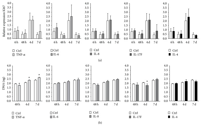 Comparative analysis of the effect of pro- and anti-inflammatory cytokines on hASC proliferation. ASCs were stimulated for 72 h with proinflammatory cytokines TNF- α , IL-6, IL-8, and IL-17F and the anti-inflammatory cytokine IL-4 (10 ng/mL). (a) Gene expression of proliferation marker KI67 at 6 h, 48 h, and days 4 and 7. No significant effects of cytokines on KI67 expression were found, n = 7. (b) DNA content at 48 h, day 4, and day 7. TNF- α decreased DNA content at 48 h but increased DNA content at days 4 and 7. IL-17F decreased DNA content at day 4. n = 3, results are mean ± SD. ∗ Significant effect of cytokine treatment, p