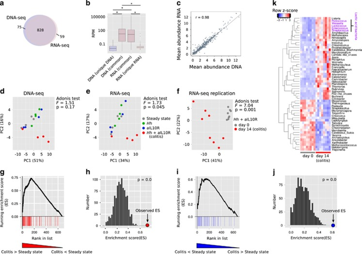 Differentially abundant genera in colitis versus steady state. ( a ) Overlap of genera detected with ⩾1 read in ⩾1 sample in metagenomic and metatranscriptomic analyses. ( b ) Distributions of reads per million (RPM) for genera detected in DNA-seq, RNA-seq or both data sets (average across 16 samples). *Wilcoxon rank-sum test P