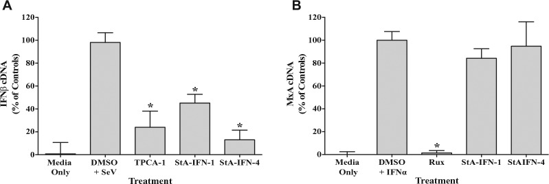 Effect of StA-IFN-1 and StA-IFN-4 on interferon β (IFNβ) and MxA messenger RNA (mRNA) levels. Effect of StA-IFN-1, StA-IFN-4, and TPCA-1 on IFNβ mRNA levels in A549 cells infected with Sendai virus (SeV) ( A ) or StA-IFN-1, StA-IFN-4 and Ruxolitinib on MxA mRNA levels in A549 cells activated with purified interferon α (IFNα) ( B ). Cells were treated with compound 2 h prior to activation. Three hours post-SeV infection and 18 h post-IFNα treatment, total cellular RNA was extracted and reverse transcribed. The resultant complementary DNA (cDNA) was used to quantitative PCR amplify either IFNβ or MxA sequences using appropriate primers. C t values were subjected to absolute quantitation using a 6-point standard curve with DNA of known concentration and converted into % cDNA of controls. Data represent the mean of three independent experiments, each conducted in triplicate; error bars indicate SD. Statistical significance was assessed using the Student's t test to compare compound treatment with the DMSO plus SeV or IFNα (* p