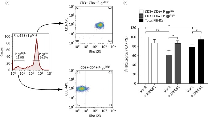 Raltegravir intracellular accumulation analysis of <t>CD3+CD4+P-gp</t> high and P-gp low populations. (a) After Rho123 incubation (1 μM, 20 min, 37°C), PBMCs were put in culture (complete medium) during 2 h to let the dye be effluxed and then stained with <t>anti-CD3-APC</t> and anti-CD4-PerCP antibodies. CD3+CD4+ T cells were sorted based on their Rho123 staining: P-gp high (Rho123 very low) and P-gp low (Rho123 high). Cells were directly used in subsequent [ 3 H]raltegravir accumulation assays. (b) CD3+CD4+P-gp high and CD3+CD4+P-gp low cells were incubated in transport medium with 1 μM (1 μCi/mL) [ 3 H]raltegravir in the absence (mock) or presence of the P-gp-specific inhibitor XR9051 (1 μM). Unsorted (total) PBMCs were used as control of viability and transport, considering that they contain CD8+ T cells, NK and monocytes. The results represent the mean ± SEM of five independent experiments (each with a different blood donor) performed in duplicate. Statistical significance was assessed by paired t -test (* P