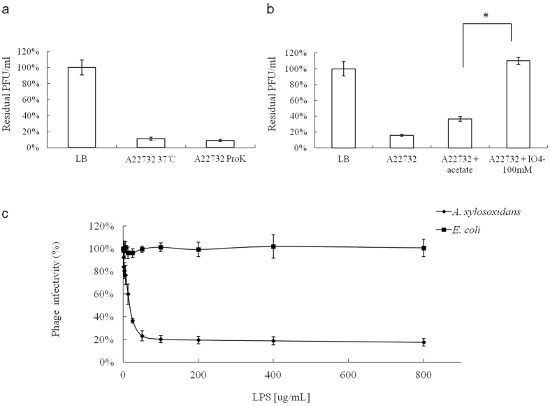 """Effects of different treatments applied to the host bacterium on phiAxp-2 adsorption, which is shown as residual pfu percentages. ( a ) Effect of proteinase K treatment on the adsorption of phiAxp-2 to A. xylosoxidans strain A22732. ( b ) Effect of periodate treatment on the adsorption of phiAxp-2 to A. xylosoxidans strain A22732. The controls (LB and """"A22732+ acetate""""), untreated (A22732), and treated groups (""""A22732+ ProtK"""", treated with proteinase K; """"A22732+ IO 4− """", treated with periodate) were tested for adsorption, as indicated on the x axes. Error bars denote statistical variations. Significance was determined with one-sample Student's t test when the treated and untreated groups were compared. * P"""