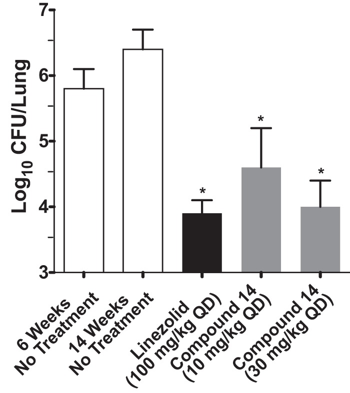 Efficacy of compound 14 in a mouse model of chronic TB infection. C57BL/6J mice were infected with M. tuberculosis H37Rv intratracheally (∼10 2 CFU) and were dosed once daily for 8 weeks starting 6 weeks after infection. Mice were sacrificed 24 h after the last drug administration. Every column represents the mean values ± standard deviations of data from 7 mice per group for untreated and linezolid-treated groups and from 3 mice for compound 14-treated mice. *, P