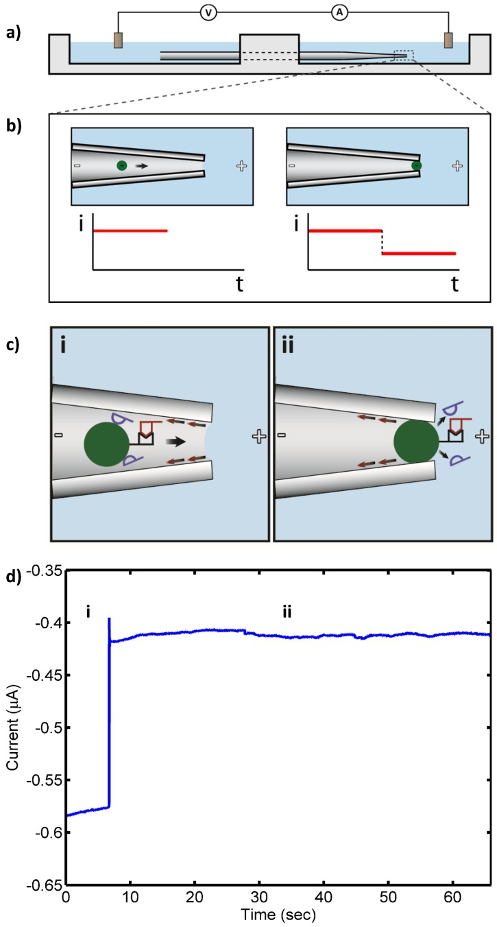"""( a ) Apparatus schematic. A micropipette drawn to a 2 µm diameter bridges two chambers filled with electrolyte. Negatively charged 3 µm diameter beads placed in the micropipette are electrophoretically drawn to the narrow end of the micropipette by an electric field applied by electrodes in each of the chambers; ( b ) When a bead reaches the narrow end of the micropipette, it blocks the current, which is measured by the electrodes; ( c ) Schematic of target <t>16S</t> <t>rRNA</t> (10 pM, red) hybridized to PNA-bead conjugates in the drawn micropipette under applied electric field in the presence of nonspecifically bound, background RNA (blue): (i) open pore state as bead with bound RNA approaches the micropipette tip (""""pore""""); and (ii) blockade of the pore by the PNA-bead conjugate with bound RNA (blocked pore state). Nonspecifically bound RNA (blue) detaches from the bead in the strong electric field at the micropipette tip, while the specifically bound RNA remains, leading to a persistent blocked pore state; ( d ) Measured ionic current through the pore: (i) open pore current; and (ii) current blockade by PNA-bead conjugates with bound RNA."""