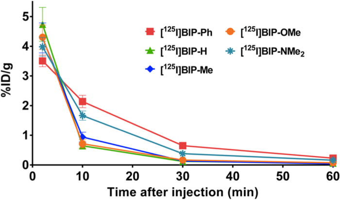 Comparison of uptake into and clearance from the brain after intravenous injection of  125 I-labeled BIP derivatives into normal mice (n=5).