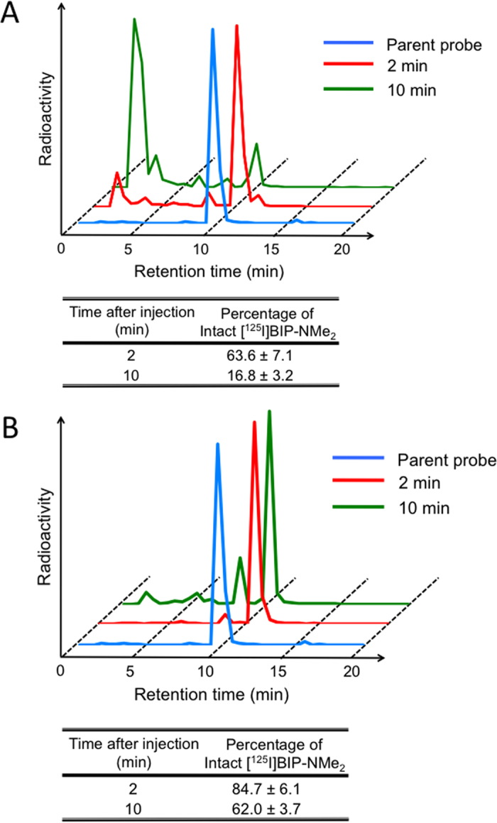 HPLC analysis of radioactivity in the blood ( A ) and brain ( B ) after injection of [ 125 I]BIP-NMe 2  into mice (n=4).
