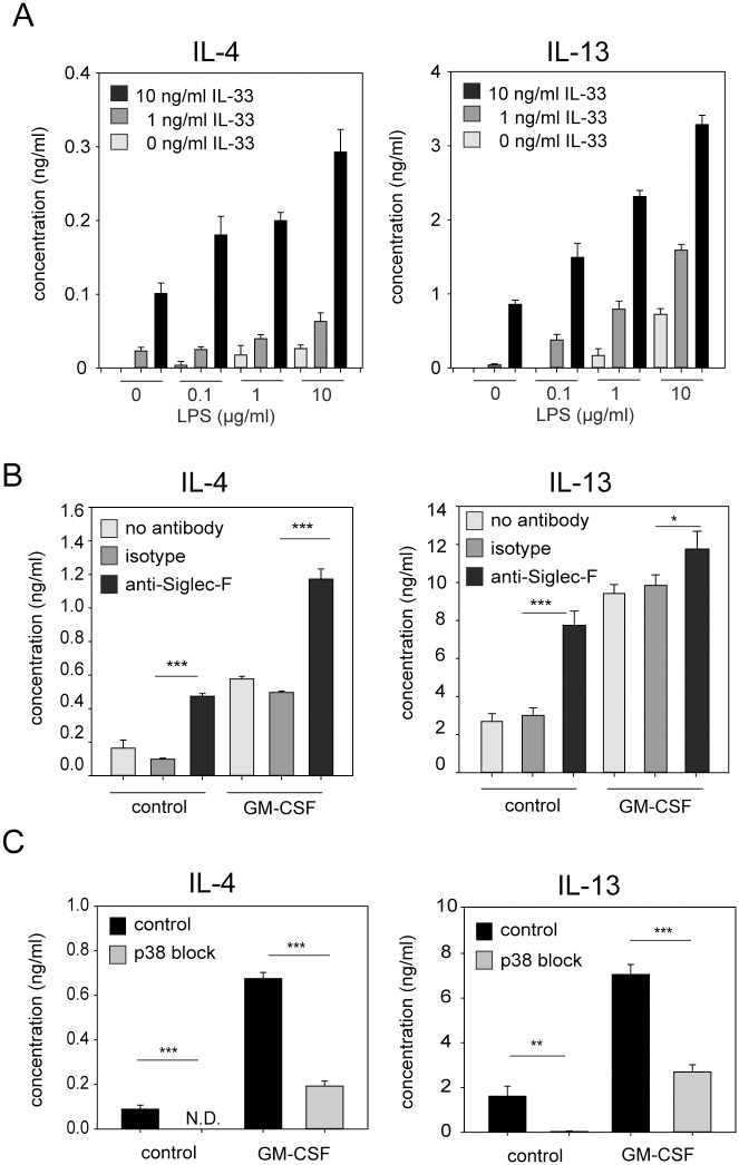 GM-CSF, LPS and Siglec-F signaling enhance IL-33-induced secretion of IL-4 and IL-13 from eosinophils. (A) BMDE were cultured with IL-5 and indicated concentrations of IL-33 and LPS. (B) BMDE were cultured in 10 ng/ml IL-5 and IL-33 in the presence or absence of 10 ng/ml GM-CSF. In addition, anti-Siglec-F, isotype control antibody or no antibodies were added to the culture. (C) BMDE were cultured in 10 ng/ml IL-5 and IL-33. In addition, the p38 kinase was blocked with 5 μM SB203580 and DMSO was used as solvent control. All supernatants were analyzed at 24 hours after onset of culture by IL-4 and IL-13 specific ELISAs. Bars show the mean + SD from one of two independent experiments with similar results (A; n = 4) the mean + SD from one of three independent experiments (B; n = 4) and mean + SEM pooled from two independent experiments (C; n = 8) *p