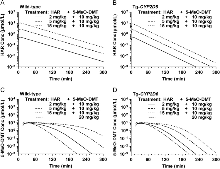 Model predicted serum harmaline (A and B) and 5-MeO-DMT (C and D) concentration versus time profiles following the administration of 2, 5 or 15 mg/kg harmaline plus 10 mg/kg 5-MeO-DMT, or 20 mg/kg 5-MeO-DMT alone in wild-type and Tg- CYP2D6 mice. Harmaline and 5-MeO-DMT were dosed i.p. at 0 and 15 min, respectively. The solid (─), dashed (- -) and dotted (··) lines represent the simulated data of harmaline and 5-MeO-DMT in mice treated with ascending doses of harmaline (2–15 mg/kg) plus 10 mg/kg 5-MeO-DMT, while the dashed plus dotted (-·-) lines represent 5-MeO-DMT profiles in mice treated with 20 mg/kg 5-MeO-DMT alone. The PK profiles were obtained using our previously established PK DDI model 27 that is also shown in Fig. 1 .