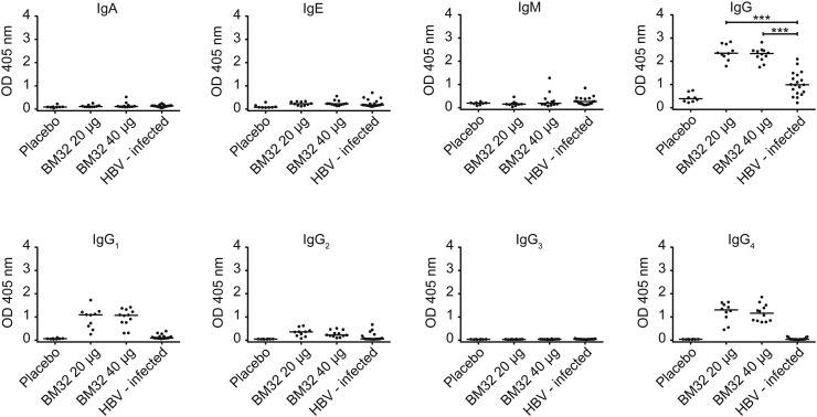 PreS-specific antibody responses of subjects vaccinated with BM32 or placebo and of HBV-infected individuals. Shown are optical density values (y-axes: OD values) of IgA, IgE, IgM, IgG and IgG subclass (IgG 1 –IgG 4 ) levels specific for preS of subjects immunized with placebo (n = 8), 20 μg (n = 10) or 40 μg of BM32 (n = 12) at visit 15 as well as of HBV-infected individuals (n = 19) (x-axes). Medians are indicated by horizontal lines, significant differences are indicated: *** P