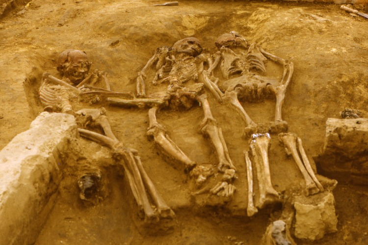 The triple burial of Dolní Věstonice, Moravia, dated to around 31,000 years before present. From left to right: DV 13, DV 15, DV 14.