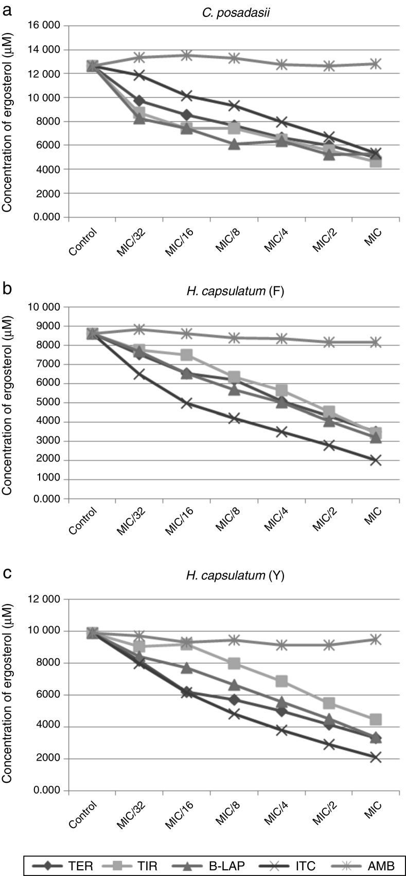 Quantification of ergosterol from the ten strains of Coccidioides posadasii (2a), eight filamentous (F) strains of Histoplasma capsulatum (2b), and eight yeast (Y) strain of H. capsulatum (2c) after exposure to sub-inhibitory concentrations of terpinen-4-ol (TER), tyrosol (TIR), β-lapachone (B-LAP), itraconazole (ITC, control drug), and amphotericin B (AMB, control drug). These values represent the average results for all strains tested for each species. Control: fungal growth control without drug.