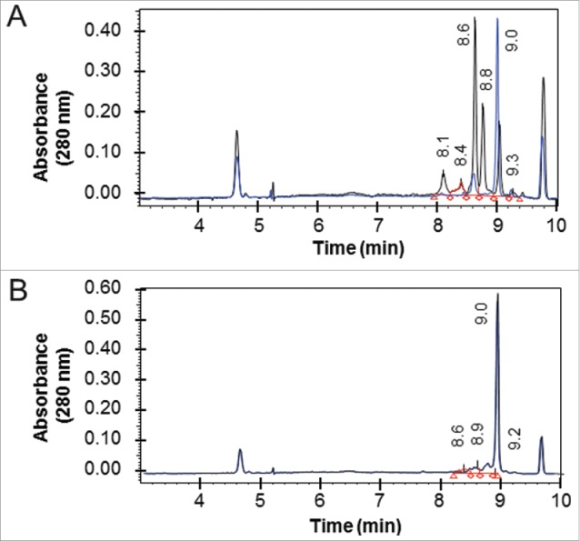 Isoelectric focusing of Fab-dsFv. The pI of non-reduced (black line) and reduced and alkylated (blue line) of purified (A) Fab' fragment and (B) Fab-dsFv was determined by iCE280 capillary isoelectric focusing. Samples were mixed with methylcellulose, pharmalytes (pH3-10) and synthetic pI markers prior to separation. For mild reduced and alkylated samples, iodoacetamide was used as the alkylating agent after reduction with Tris(3-hydroxypropyl)phosphine (THPP). Profiles were continuously detected at an absorbance of 280 nm. The pI values of the non-reduced sample are indicated on each graph. Calibrated electropherograms were analyzed using Empower 2 (Waters).