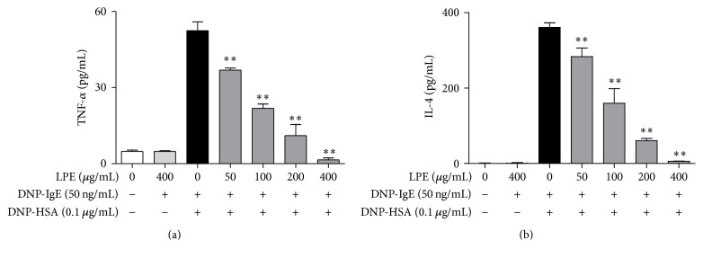 Inhibitory effect of LPE on proinflammatory cytokines. IgE-sensitized RBL-2H3 cells were preincubated with LPE for 1 h prior to antigen challenge. TNF- α and IL-4 levels were determined as described in Section 2 . Data are mean ± SD values of triple determinations. ∗∗ P