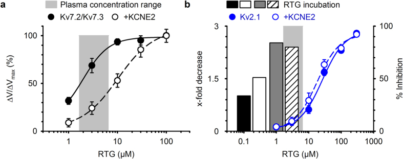 Molecular pharmacology on K V 2 and K V 7 channels in HEK cells compared with retigabine plasma concentrations. ( a ) Concentration-effect relationship of retigabine potentiation on K V 7.2-K V 7.3 currents in the absence (filled circles) and presence (open circles) of KCNE2. The grey bar represents the plasma concentration range, minimum (0.65 μM) to maximum (6.6 μM), in patients treated with 600–1200 mg retigabine/day 38 39 40 41 42 . Although KCNE2 shifted the concentration-effect curve, K V 7.2-K V 7.3 current potentiation was not fully prevented in the plasma concentration range. ( b ) Concentration-effect relationship of K V 2.1 inhibition in absence (blue, filled circles) and presence (blue, open circles) of KCNE2, obtained from direct perfusion of retigabine on the Kv2.1 channels. The light grey bar represents the plasma concentration range as in ( a ). Black, white, dark grey and striped bar represent the x-fold reduction in K V 2.1 current density obtained from the retigabine incubation experiments. Although little direct K V 2.1 inhibition occurred, maximal suppression of the K V 2.1 current density occurred in the plasma concentration range.