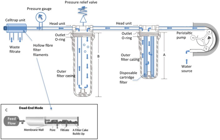SWiFT cell capture rig technical specifications . A Watson Marlow <t>620SN/R</t> encased pump draws source water through the apparatus, water flow indicated by blue arrows. Clear water filtration unit (A) 10″ houses the disposable supaplete II 35 micron pre-filter (Amazon filters) while (B) 20″ acts as a bubble trap once air is purged from the chamber via the adjustable valve. High volume Celltrap units connect to the main body via luerlok connection to perform a dead-end filtration. (C) Cells are recovered from the disconnected CT by drawing filtrate back through the filaments with a 50 ml luer lock syringe (VWR).