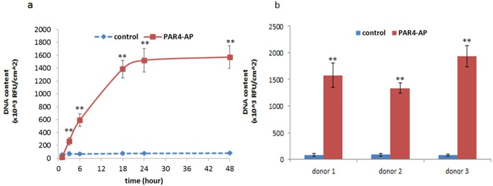 Adhesion of OBA9 epithelial cells to PRP pre-incubated titanium surfaces. Adhered OBA9 cells were counted by nuclear DNA staining with Hoechst 33342. Each data point represents mean ± SD of three independent cultures. Kinetic adhesion was determined in the titanium that was pre-incubated with PRP from one representative donor (a). The adhesion assay was triplicated at 60 minutes with PRP from different donors (b). ** indicates a significant difference than control at the corresponding time point and in the corresponding donors (** p