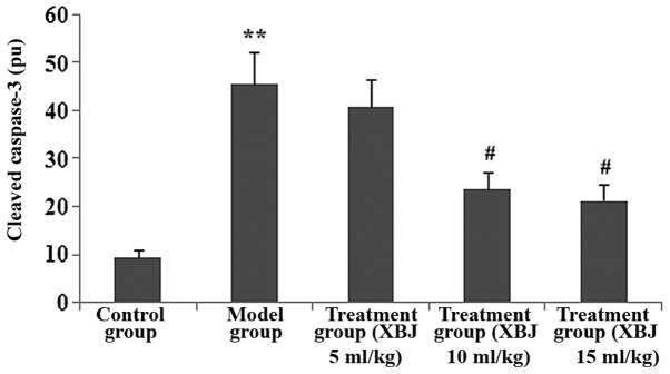 Administration of Xuebijing injection (XBJ) decreases the positive expression of cleaved caspase-3 in the liver tissues of lipopolysaccharide (LPS) plus D-galactosamine (D-Gal)-exposed rats. The groups of rats were challenged with LPS, 10 µ g/kg plus D-Gal, 500 mg/kg and treated with XBJ 24 h later. Immunostaining was performed on the liver sections following antigen retrieval using Retrievagen A. Using Image-Pro Plus image analysis software, the cleaved caspase-3 positive expression levels in the liver tissue were calculated. Data are presented as the means ± SD of one experiment consisting of three replicates. The experiments were performed in triplicate. ** P