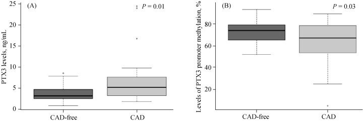 PTX3 levels and levels of PTX3 promoter methylation according to CAD occurrence. (A): PTX3 levels in the CAD-free group were 3.65 ± 2.14 ng/mL ( n = 25), lower than the CAD group ( n = 39); (B): the levels of PTX3 promoter methylation in the CAD-free group were 72.45% ± 11.84% ( n = 25), higher than the CAD group (62.69% ± 20.57%, n = 39). CAD: coronary artery disease; PTX3: Pentraxin 3.
