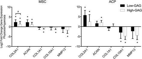 Gene expression analysis for fold-change of chondrogenic markers of the articular cartilage phenotype ( COL2A1 , ACAN ), the fibrocartilaginous phenotype ( COL1A1 ), and the hypertrophic phenotype ( COL10A1 , MMP13 ) demonstrates varied chondrogenic responses by high-GAG and low-GAG groups of each cell type, MSCs and ACPs, during pellet culture in physioxic relative to hyperoxic conditions. Data are mean ± standard deviation of fold-change for each group ( n = 6–10). Statistical significance defined as * p