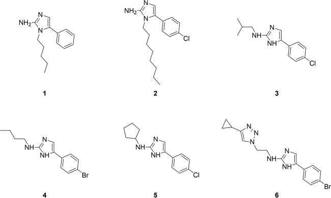 Structures of 5-Ar-2-AI-based compounds whose activities against a broad panel of monospecies and mixed-species biofilm models were tested in this study.