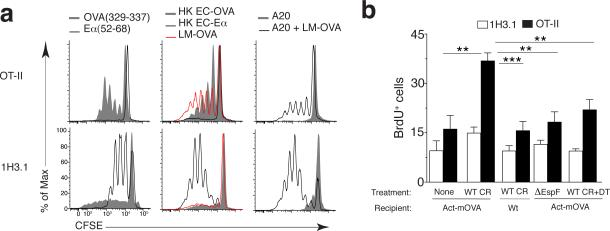 Presentation of apoptotic-cell-derived antigens during infection ( a ) Proliferation of OT-II and 1H3.1 CD4 + T cells (left margin) in response to BMDCs pulsed with OVA(329–337) or Eα(52–69) (left), phagocytosis of recombinant heat-killed E. coli expressing OVA (HK EC-OVA) or Eα (HK EC-Eα) or LM-OVA (middle), or phagocytosis of uninfected Eα + A20 cells (A20) or LM-OVA-infected apoptotic Eα + A20 cells (A20 + LM-OVA) (right), presented as dilution of the division-tracking dye CFSE. ( b ) Frequency of proliferating (BrdU + ) LI LP cells in Act-mOVA host mice given CD11c-DTR bone marrow and OT-II T cells plus 1H3.1 T cells and left uninfected (None) (n = 6) or infected with wild-type C. rodentium (WT CR) (n = 7), in wild-type host mice given bone marrow and T cells as above and infected with wild-type C. rodentium (n = 6), or in Act- mOVA host mice given bone marrow and T cells as above and infected with ∆EspF C. rodentium (n = 9) or infected with wild-type C. rodentium and treated with diphtheria toxin (WT CR+DT) (n = 6), assessed by flow cytometry with gating on Vβ6 + (1H3.1) CD4 + T cells or Vα2 hi Vβ5 + (OT-II) CD4 + T cells. * P ≤ 0.01 and ** P ≤ 0.001 (one-way analysis of variance (ANOVA) and Tukey's post-test). Data are representative of three experiments (mean + s.d. in b).