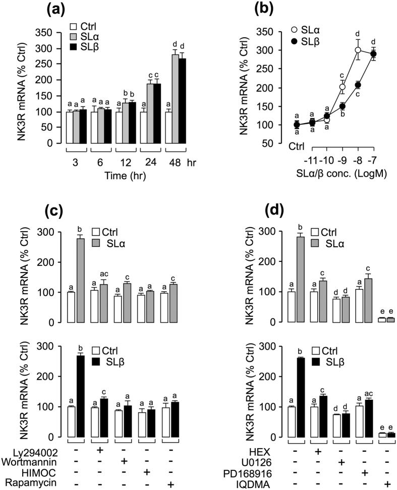Up-regulation of NK3R gene expression by SLα/β in grass carp pituitary cells. (a) Time course of carp SLα (30 nM) and SLβ (30 nM) treatment on NK3R mRNA expression in carp pituitary cells. (b) 24-hr incubation with increasing levels of SLα or SLβ (0.01–100 nM) treatment on NK3R mRNA expression in carp pituitary cells. (c) Effects of 24-hr co-treatment with the PI 3 K inhibitor Ly294002(10 μM) and wortmannin (1 μM), Akt inhibitor HIMOC (10 μM) and mTOR inhibitor rapamycin (20 nM) on SLα (30 nM)- or SLβ (30 nM)-induced NK3R transcript expression in carp pituitary cells. (d) Effects of 24-hr co-treatment with the JAK 2 inhibitor HEX (50 μM), STAT 5 inhibitor IQDMA (50 μM), MEK 1/2 inhibitor U0126 (10 μM) and p38 MAPK inhibitor PD169816 (10 μM) on SLα (30 nM)- or SLβ (30 nM)-induced NK3R mRNA expression. After drug treatment, total RNA was isolated for real-time PCR of NK3R mRNA. In the data present (Mean ± SEM), the groups denoted by different letters represent a significant difference at p