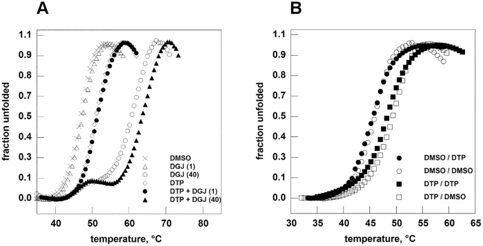 2–6 dithiopurine stabilizes human lysosomal alpha-galactosidase in thermal shift assay. Panel A. Fabrazyme ® (in <t>Na-Hepes</t> 20 mM, NaCl 150 mM, pH 7.4) was equilibrated in the presence of ligands dissolved in DMSO 20%: DGJ 1 microM (empty triangle) or 40 microM (empty circle); <t>DTP</t> 6 mM (empty diamond); DTP 6 mM plus DGJ 1 microM (filled circle); DTP 6 mM plus DGJ 40 microM (filled triangle). A control (with only DMSO) was also shown (x). Panel B. Fabrazyme ® (in Na-Hepes 20 mM, NaCl 150 mM, pH 7.4) was incubated in the presence of DTP 6 mM for 1 hour at 4°C then DTP was eliminated by dialysis. A control experiment was conducted by incubating the enzyme only with DMSO. Both the aliquots of Fabrazyme ® were analysed by thermal shift assay in the presence of DTP 6 mM or in the presence of DMSO. Filled squares: DTP/DTP; open squares: DMSO/DTP; filled circles: DTP/DMSO; open circles: DMSO/DMSO where the first word of the label corresponds to the pretreatment and the second part corresponds to the presence of the compound during the thermal scan. The protein samples were heated from 20 to 90° at 1°C/min in the presence of Sypro Orange 2.5x. Data were shown as normalized curves.