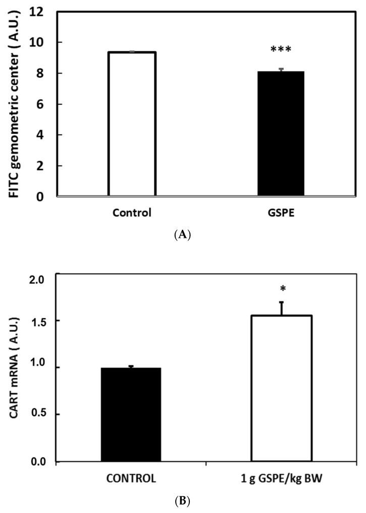 Grape seed proanthocyanidin extract (GSPE) effect on physiological parameters. Wistar rats that received GSPE treatments are indicated as white columns. Control animals are indicated as black columns. ( A ) rats received a chronic treatment with 0.5 g GSPE /kg body weight (BW). Fluorescein isothiocyanate (FITC) was orally forced and FITC in different gastrointestinal localizations was measured after death; ( B ) rats received an acute treatment of 1 g GSPE/kg BW. After death, hypothalamic CART expression was measured. n = 6 per group; * p
