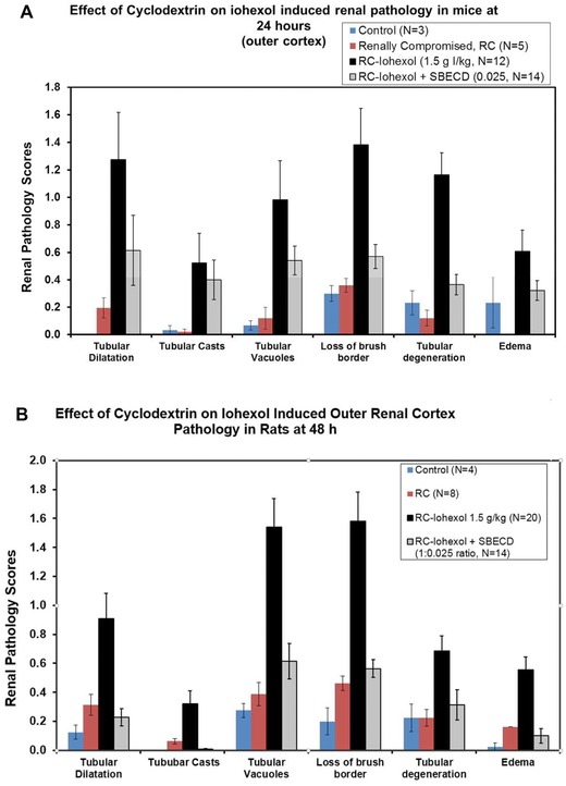 (A) Effect of adding SBECD (sulfobutyl‐either β cyclodextrin) to iohexol on mouse outer renal cortex pathology measurements for six parameters at a mole ratio of iohexol:SBECD of 1:0.025. (B) Effect of adding SBECD to iohexol on rat outer renal cortex pathology measurements for six parameters at a mole ratio of iohexol:SBECD of 1:0.025.