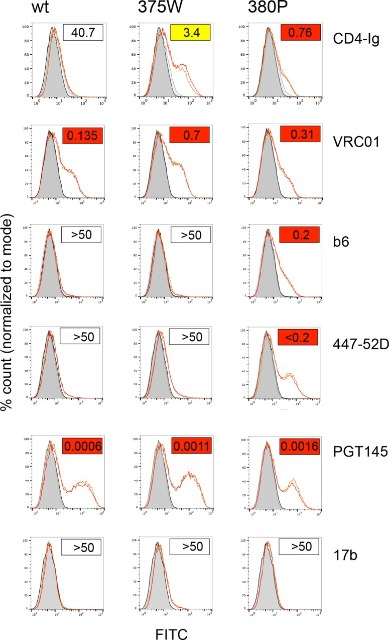 Direct binding measurements of CD4-Ig and mabs follows neutralization sensitivity of Env+ pseudoviruses. LN8 wt, 375W and 380P Envs were expressed on <t>293T</t> cells before measuring binding of CD4-Ig and mabs using flow cytometry. Boxed values in the right hand, top corner of each flow profile represents the neutralization titer for each reagent and shows that binding closely followed neutralization sensitivity.