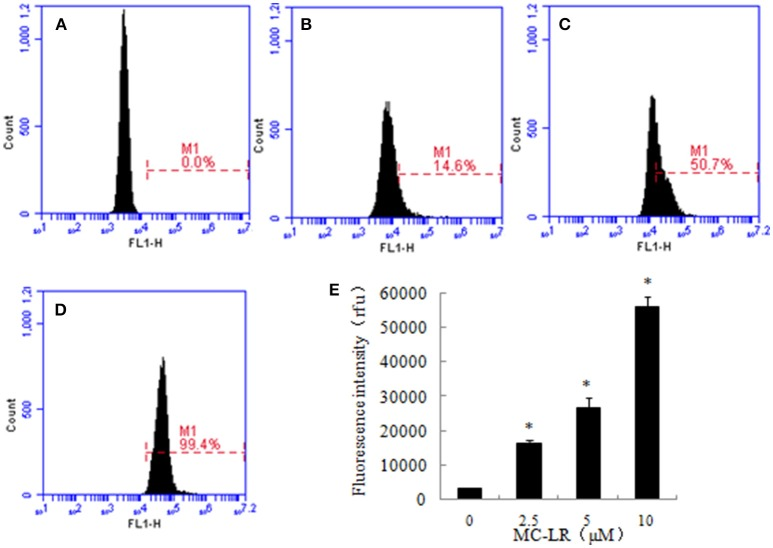 The effect of Microcystin-LR (MC-LR) on intracellular Ca 2+ concentration . Intracellular Ca 2+ levels were measured in different groups by Fluo-3/AM fluorescent probes through flow cytometry. (A) 0 μM, (B) 2.5 μM, (C) 5 μM, (D) 10 μM, (E) Bars represent the mean values of three replications ± SD. * P