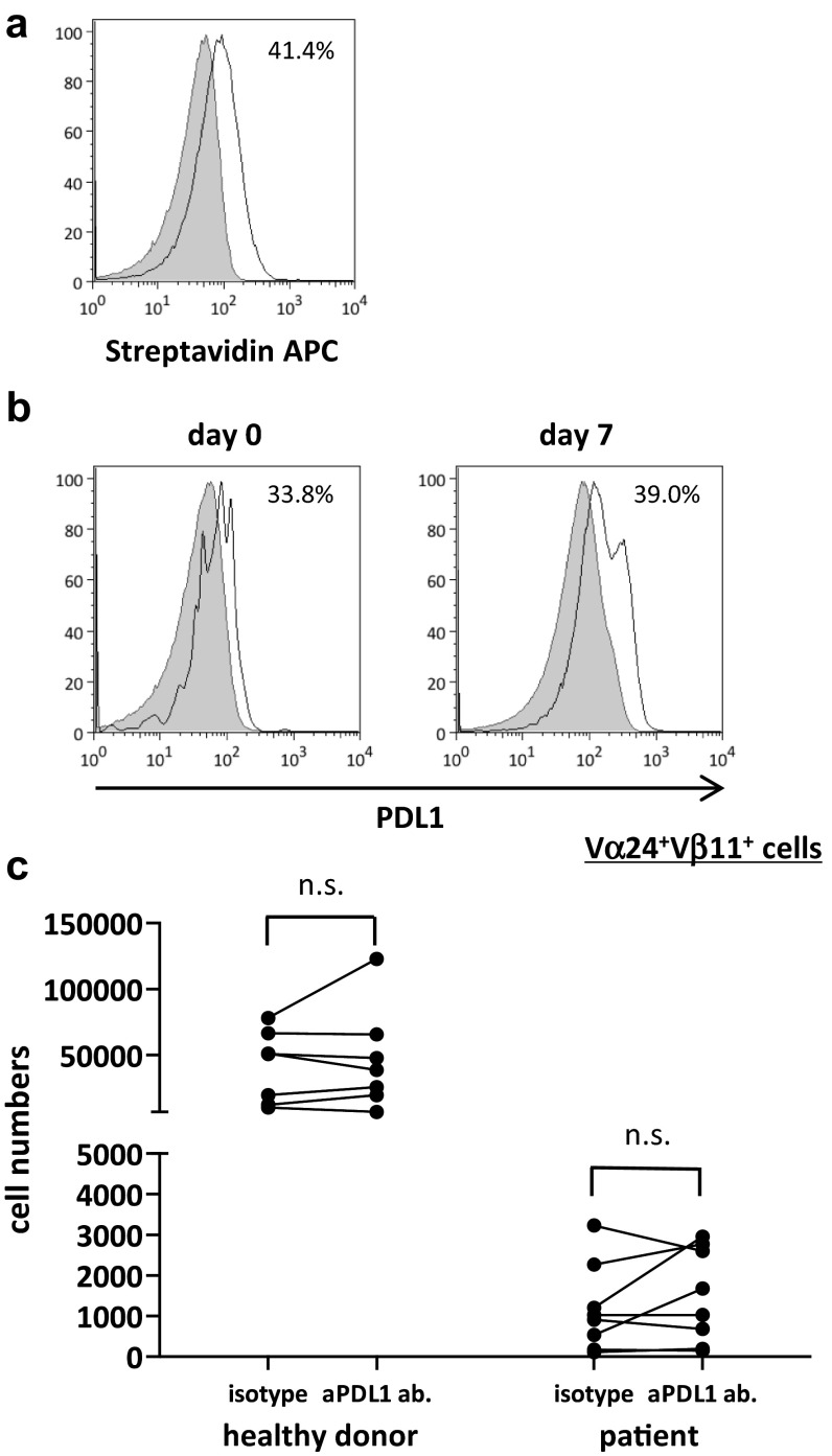 Proliferation of human iNKT cells with PDL1 blockade. PBMCs were obtained from six healthy donors and eight non-small cell lung cancer patients. On day 0, PBMCs were stimulated with αGalCer-pulsed IL-2/GM-CSF cultured APCs with anti-PDL1 antibody or isotype control. On day 7, cells were collected and restimulated with PDL1-blocked or isotype control-treated APCs at a ratio of 1:2.5. The cells were collected and counted on day 14, and the proportion of Vα24 + Vβ11 + iNKT cells was analyzed using flow cytometry. a Anti-PDL1 antibody binding and PDL1 positivity on APCs were assessed using anti-mouse biotin plus streptavidin staining. b The percentage of PDL1-positive iNKT cells on days 0 and 7 were analyzed with APC-conjugated anti-human PDL1. The gray-shaded histogram represents the isotype control; the unshaded histogram represents PDL1. c The number of Vα24 + Vβ11 + iNKT cells on day 7 is shown. PDL1 positivity on APCs was analyzed according to the population comparison method using the FlowJo software program. P values were calculated using the unpaired t test. isotype, isotype control; aPDL1 ab, anti-PDL1 antibody
