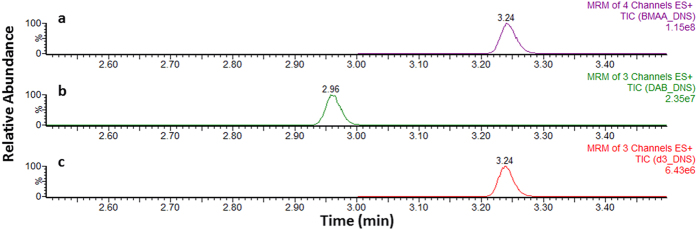 Ultra-high performance liquid chromatography-tandem mass spectrometry chromatograms obtained for ( a ) BMAA-DNS, ( b ) DAB-DNS and ( c ) D 3 -BMAA-DNS solvent standards at 250 ng/ml, 250 ng/ml and 100 ng/ml, respectively. (MRM, multiple reaction monitoring).