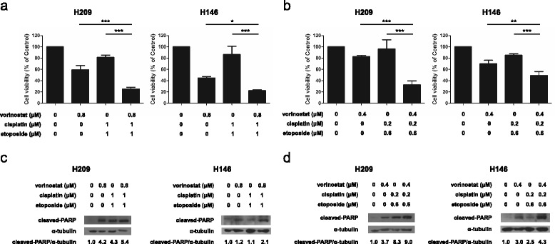 Effects of triple combination treatments of vorinostat with cisplatin and etoposide on the viability and apoptosis of SCLC cells. H209 and H146 cells were treated with or without vorinostat in combination with cisplatin ( a vorinostat at 0.8 μM, and cisplatin and etoposide both at 1 μM; b vorinostat at 0.4 μM, cisplatin at 0.2 μM, and etoposide at 0.6 μM) for 24 h. Cell viability was determined using the MTS assay, and data were represented as mean ± SD in triplicate. A significant reduction in cell viability was documented (*, P