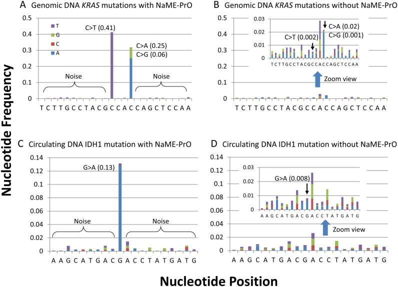 Multiplexed NaME-PrO combined with targeted re-sequencing. Multiplexed-NaME-PrO applied to cfDNA from normal volunteers spiked with fragmented genomic DNA to generate ∼0.5% mutation abundance at multiple clinically relevant sites. Following NaME-PrO, samples were PCR-amplified and processed for library preparation. Variant to noise plots derived from Illumina MiSeq sequencing data are depicted. ( A and B ) KRAS G12V, G12R, G13D mutations in fragmented genomic DNA with and without application of NaME-PrO, respectively. ( C and D ) IDH1 R132C mutation in cfDNA with and without NaME-PrO, respectively. The original mutation abundance is 0.5% in both cases, while the read depth is about 1000–2000× depending on sequence. Inserts in B and D represent magnified versions of the same graphs to depict clearly the effect of sequencing noise. Application of NaME-PrO increases the signal-to-noise ratio and reveals clearly the rare mutation. Experiments were repeated two independent times.