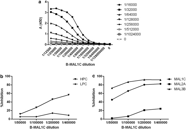 Development of the MAL1C-competition ELISA. Optimal dilutions of B-MAL1C and streptavidin-HRP were defined using a checkerboard titration experiment ( a ). At a 1/16,000 dilution of streptavidin-HRP a sigmoidal curve was observed; this dilution was used for further experiments. B-MAL1C dilutions in the range between the maximal absorbance (plateau observed at 1/50,000) and half max (max/2 observed at 1/400,000) were explored in an inhibition set up using defined sera with high and low antibody content in R32LR ELISA assay ( b ) and the three monoclonal antibodies, MAL1C, MAL2A and MAL3B ( c ). The data shown in panels b and c were obtained with the highest serum concentrations (starting dilution 1/5) and with mAb concentrations of 5 µg/ml